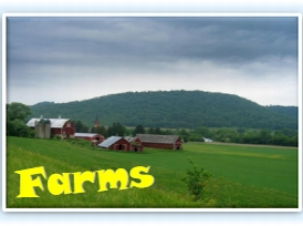 Search Farm Listings